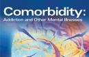 Comorbidity Report