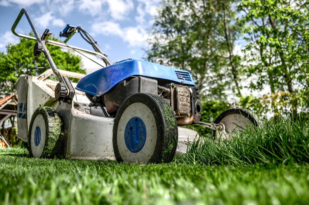 800RecoveryHub lawn