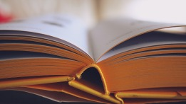 800RecoveryHub books